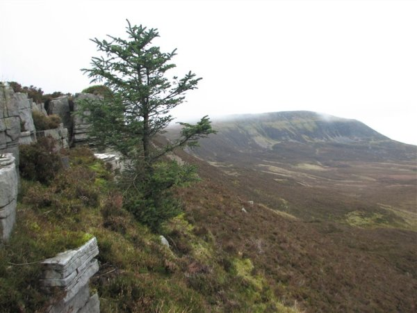 Limestone can be seen all around Cuilcagh